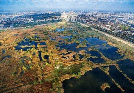 NICUSOR DAN: 'Parcul Vacaresti a intrat in administrarea Primariei Capitalei'