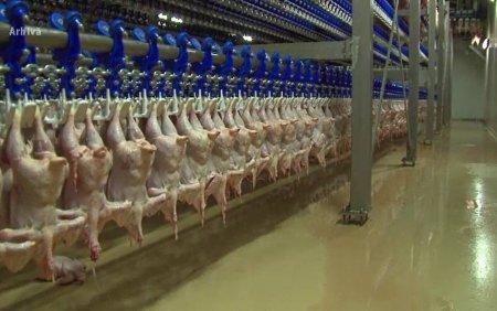 Zeci de tone de carne de pasare din impor, depistate cu salmonella de reprezentantii Autoritatii Sanitar <span style='background:#EDF514'>VETERINAR</span>e