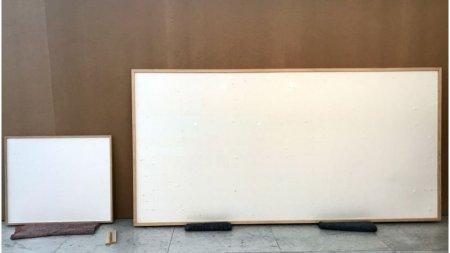 Un muzeu i-a oferit unui artist 84.000 de dolari sa creeze un tablou. A pastrat banii si a livrat o rama <span style='background:#EDF514'>GOALA</span> pe care a numit-o arta