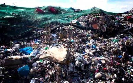 <span style='background:#EDF514'>GUNOAIE</span>le din Capitala ajung in depozite ilegale. Se poate transforma intr-un dezastru ecologic