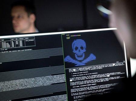 Criminalitatea cibernetica, subiect pe agenda autoritatilor din Europa si SUA