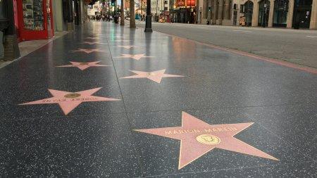 Un mare artist va primi o stea pe Walk of Fame
