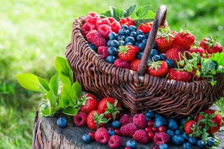 Cum conservi fructele de padure pentru sezonul rece