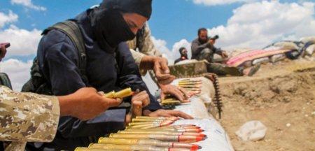 Un <span style='background:#EDF514'>CETATEAN</span> canadian considerat vocea din spatele violentei ISIS, pus sub acuzare in SUA