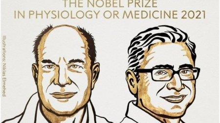 Premiul Nobel pentru Medicina din 2021 a fost acordat cercetatorilor David <span style='background:#EDF514'>JULIUS</span> si Ardem Patapoutian
