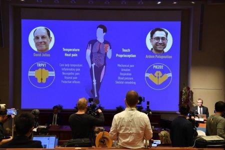 Cine sunt castigatorii Premiului Nobel pentru Fiziologie sau Medicina 2021. Ce descoperire au facut David <span style='background:#EDF514'>JULIUS</span> si Ardem Patapoutian
