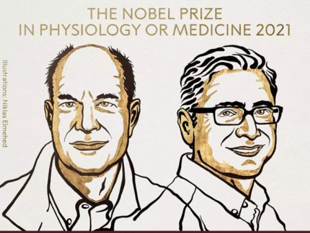David <span style='background:#EDF514'>JULIUS</span> si Ardem Patapoutian au castigat Premiul Nobel pentru Medicina in 2021. Reactie vehementa: E o mare dezamagire