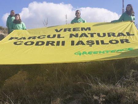 Orice oras care se respecta merita sa aiba un punct de contemplare: Greenpeace Romania si infiintarea Parcului Natural <span style='background:#EDF514'>CODRI</span>i Iasilor