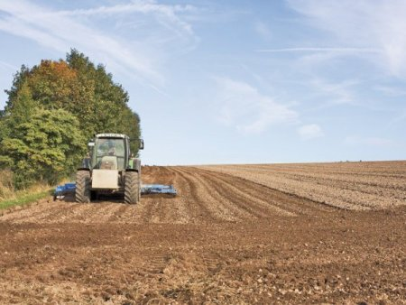 Investitorii in agricultura au la dispozitie 760 mil. euro pentru investitii in ferme, incepand din 25 octombrie. 125 mil. euro sunt alocati pentru proiecte de achizitii de utilaje agricole sau irigatii, drenaj ori desecare la nivelul fermei