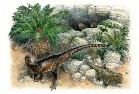 Un dinozaur de marimea unui pui a fost descoperit in Țara Galilor. Cum a fost numit dra<span style='background:#EDF514'>GONU</span>l galez