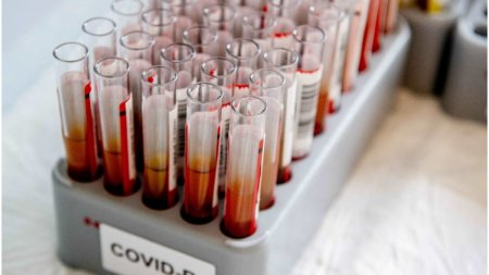 OMS, previziuni sumbre cu privire la pandemie: Suntem abia la jumatate