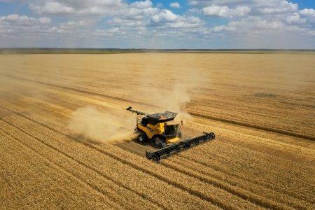 Holde Agri Invest mai cumpara o ferma <span style='background:#EDF514'>IN CALARASI</span>. Care sunt planurile de extindere