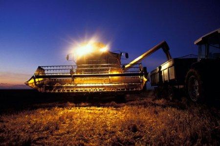 FAO: Preturile alimentelor, la maximul ultimilor 10 ani. Fata de septembrie 2020, preturile s-au majorat cu 33% la nivel global