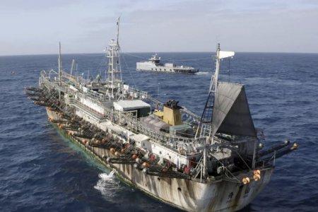 Un numar record de nave si echipaje sunt abandonate in lume, fara plata, hrana sau bani de drum