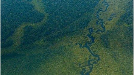 Facebook interzice vanzarea terenurilor protejate din padurea amazoniana pe Marketplace