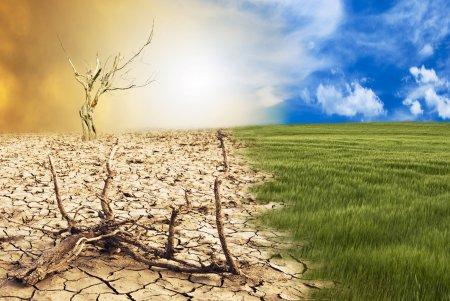 Topul tarilor responsabile istoric de <span style='background:#EDF514'>SCHIMBARILE CLIMATICE</span>. Analiza care scoate adevarul la lumina