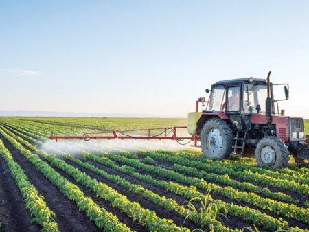ZF Agropower. IMM-urile din agricultura au planuri de dezvoltare care vizeaza si exportul, dar au nevoie de acces mai usor la fonduri europene, consiliere si management de corporatie