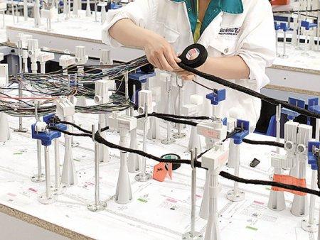 Producatorul de cabluri pentru industria auto Leoni cauta 114 oameni pentru fabrica din Bistrita
