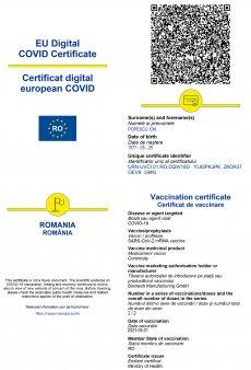 Surse: Citu le cere deputatilor liberali adoptarea de urgenta a certificatului digital Covid - 19