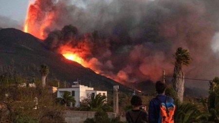 Victimele lasate in urma dupa <span style='background:#EDF514'>ERUPTIA</span> vulcanului din Canare. Caini si pisici, hranite de doua companii cu ajutorul dronelor