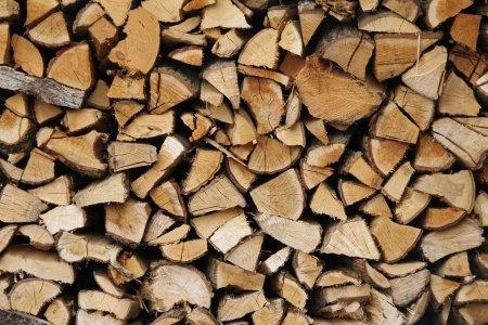 <span style='background:#EDF514'>ROMSILVA</span> scoate la vanzare 700.000 mc de lemn pentru foc pentru populatie