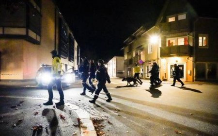 <span style='background:#EDF514'>ATACAT</span>orul de la Kongsberg este un danez de 37 de ani convertit la islam. A ucis oameni folosind arcul si sageata