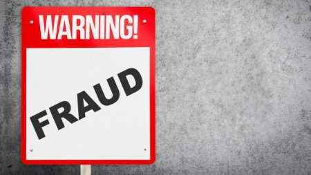 Metoda Phoenix. Premianti la fraude: care sunt procedeele lor favorite si ce legaturi au ei cu politicienii care ne conduc?
