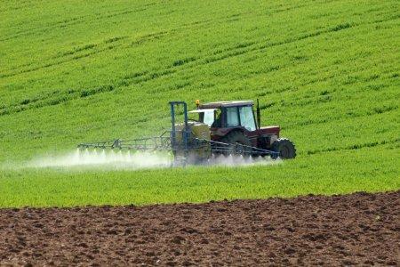 Valoarea productiei agricole, in 2020, diminuata serios de seceta. Serviciile, aproape inexistente
