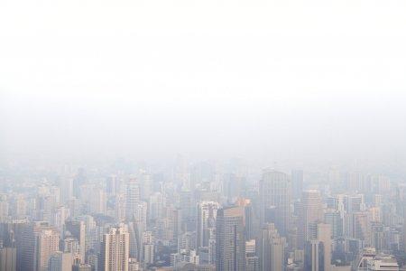 De ce rezolvarea crizei climatice trebuie sa insemne si sfarsitul capitalismului