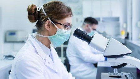 Mai multe tari fac deja comenzi pentru Molnupiravir. Noul medicament pentru tratarea Covid nu este inca autorizat
