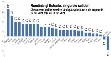 Romania si Estonia, singurele membre ale Uniunii Europene cu scaderi ale ratei ocuparii fortei de munca