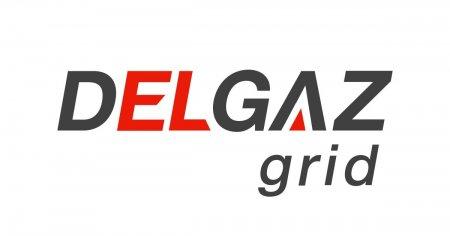 Finantare europeana pentru Delgaz Grid. Sute de angajati isi vor dezvolta competentele <span style='background:#EDF514'>DIGITALE</span>