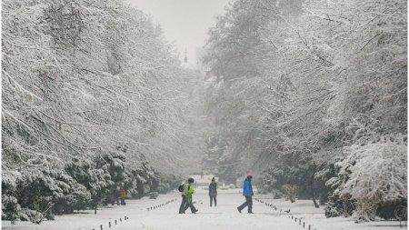 Prognoza meteo pentru iarna 2021 - 2022. Cand incep ninsorile in Romania