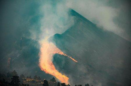 Cainii abandonati intre raurile de lava din insula La Palma, de negasit. Salvatorii i-au cautat cu dronele