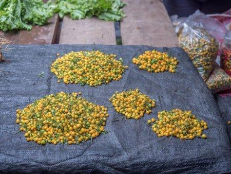 Cel mai scump ardei iute din lume, cultivat si expus la Iasi. 25.000 de dolari pentru un kilogram