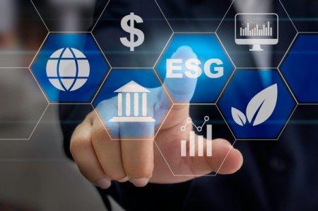 Avertisment din partea presedintelui Institutului International de Finante: Principiile ESG, dedicate obiectivelor <span style='background:#EDF514'>DE MEDIU</span>, sociale si de guvernanta corporativa, vor crea o noua bula financiara, la fel ca industria crypto