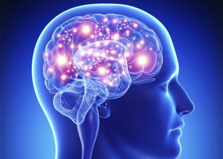 MIND: noua <span style='background:#EDF514'>DIETA</span> care mentine creierul in forma. Ce sa mananci si alimentele de evitat, ca sa fii cu 7,5 ani mai tanar