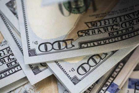 Bancile mondiale au facut bani frumosi de pe urma defrisarilor. Au fost investite peste 119 miliarde de dolari