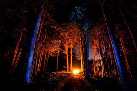 Focul lui Sumedru – traditia veche dinaintea <span style='background:#EDF514'>SFANTU</span>lui Dumitru