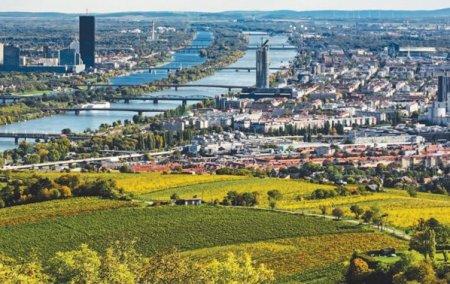 Viena, centrul financiar de pe Dunare al Estului
