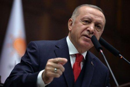 Recep Erdogan renunta la expulzarea unor diplomati occidentali