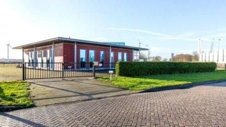 Judecatorii olandezi au decis: 3 luni cu suspendare pentru fiul patronului unei agentii care a batut crunt un muncitor roman