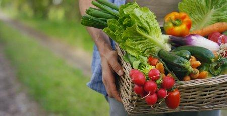Cum poti face ca legumele tale congelate sa isi pastreze vita<span style='background:#EDF514'>MINELE</span>? Iata secretul