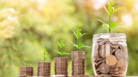 Ghidul pensiilor private: Afla la ce fond de pensii administrat privat Pilon II esti participant
