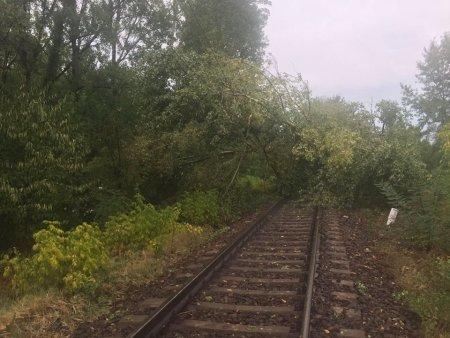 Accident feroviar la Barlad. O femeie a <span style='background:#EDF514'>MURIT</span> dupa ce a fost lovita de tren, concubinul acesteia s-a salvat in ultima clipa