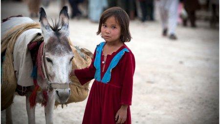 Opt orfani cu varste cuprinse intre 18 luni si opt ani au murit de foame in Kabul. Nu aveau pe nimeni